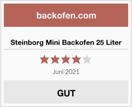 Steinborg Mini Backofen 25 Liter Test