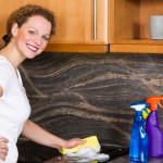Reinigung von Backöfen und Kochfeldern